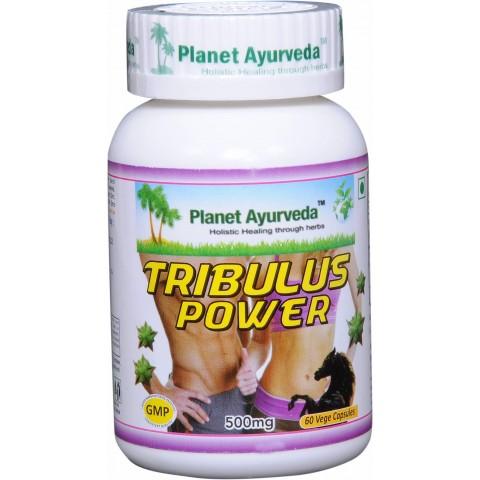 """Maisto papildas """"TRIBULUS POWER"""", Planet Ayurveda, 60 kapsulių"""