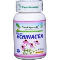 """Maisto papildas """"Indian Echinacea"""", Planet Ayurveda, 60 kapsulių"""