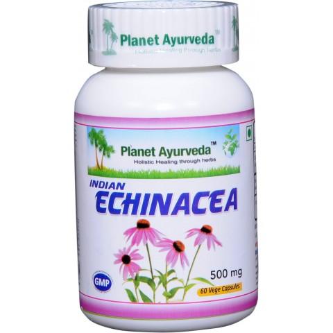 """Maisto papildas """"Indian Echinacea"""" (skėstašakis kamras), Planet Ayurveda, 60 kapsulių"""