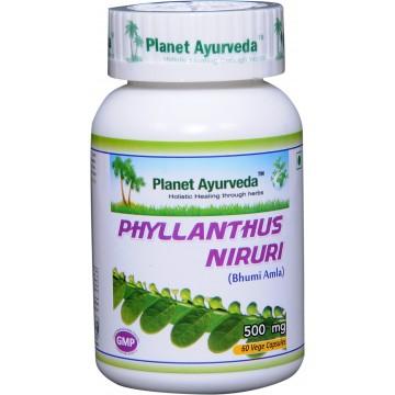 """Maisto papildas """"Phyllanthus Niruri"""" (kreivasis lapainis), Planet Ayurveda, 60 kapsulių"""