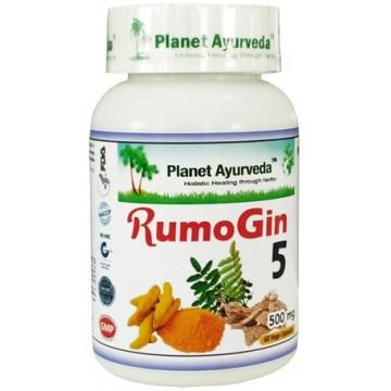"""Maisto papildas """"Rumo Gin5"""", Planet Ayurveda, 60 kapsulių"""