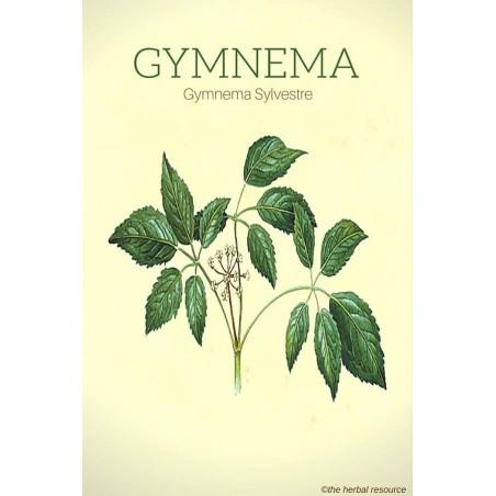 """Maisto papildas """"Gymnema Sylvestrae"""", Planet Ayurveda, 60 kapsulių"""