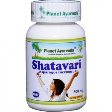 """Maisto papildas """"Shatavari (Šatavari)"""", moteriškas eliksyras, Planet Ayurveda, 60 kapsulių"""