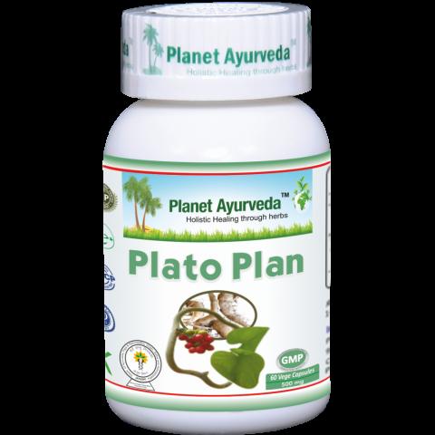 Maisto papildas Plato Plan, Planet Ayurveda, 60 kapsulių