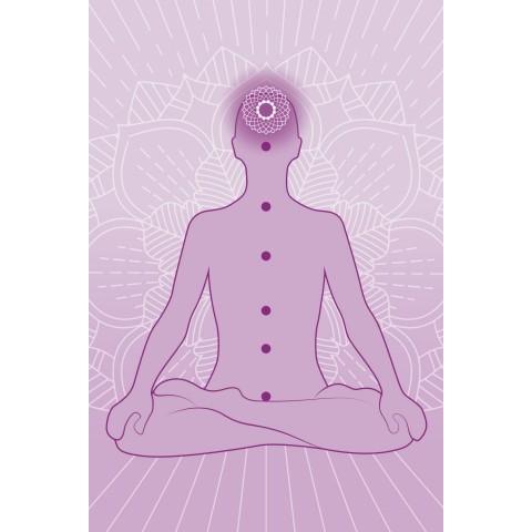 Kūno ir veido odos aliejus Shatavari Everyoung Elixir, Khadi Naturprodukte, 100ml